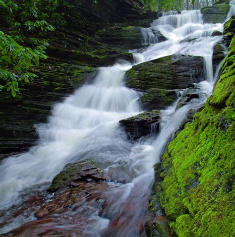 17 Amazing Rivers and Streams In Pennsylvania