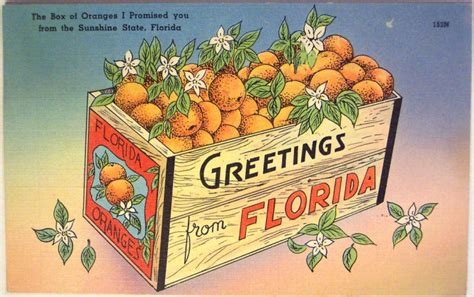 These 20 Vintage Florida Postcards Are Almost Too Charming