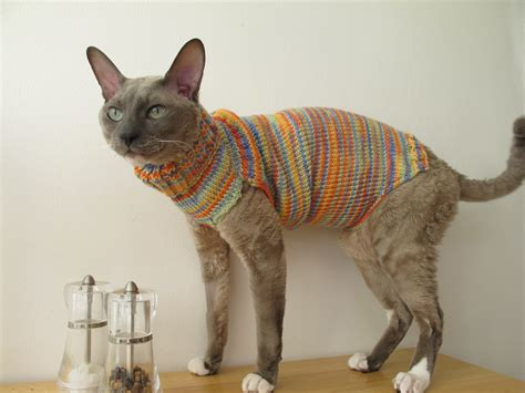 30 Photos of Cats in jumpers, various Hoodies and Tops!